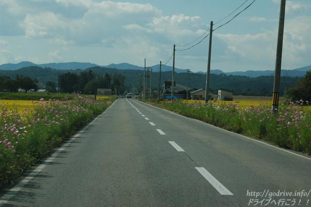 droute003-03